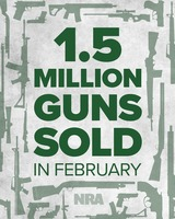 Another 1.5M guns sold in February